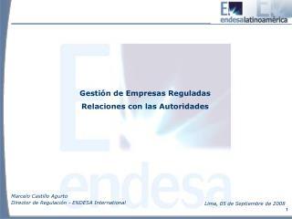 Gestión de Empresas Reguladas Relaciones con las Autoridades