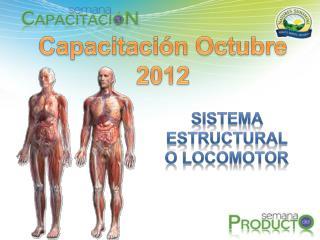 Capacitación Octubre 2012