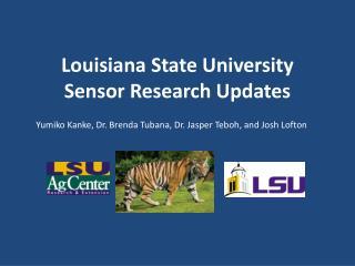 Louisiana State University  Sensor Research Updates