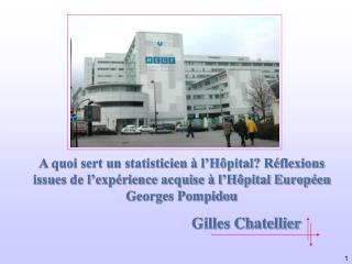 A quoi sert un statisticien   l H pital R flexions issues de l exp rience acquise   l H pital Europ en Georges Pompidou