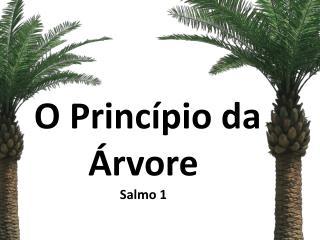 O Princ�pio da �rvore Salmo 1