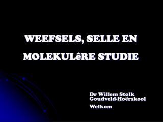 WEEFSELS, SELLE EN  MOLEKULêRE STUDIE