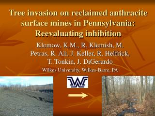 Tree invasion on reclaimed anthracite surface mines in Pennsylvania: Reevaluating inhibition
