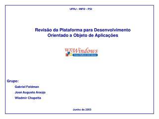 Revisão da Plataforma para Desenvolvimento Orientado a Objeto de Aplicações