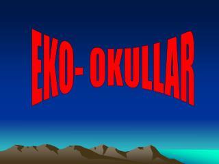 EKO- OKULLAR