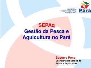 SEPAq  Gestão da Pesca e Aquicultura no Pará