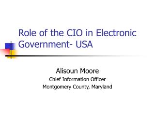 Role of the CIO in Electronic Government- USA