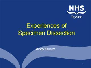 Experiences of Specimen Dissection