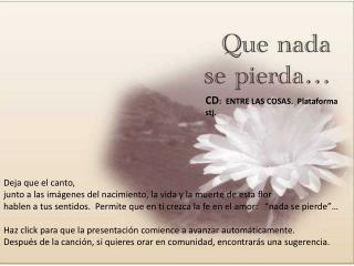 CD :  ENTRE LAS COSAS.  Plataforma stj.