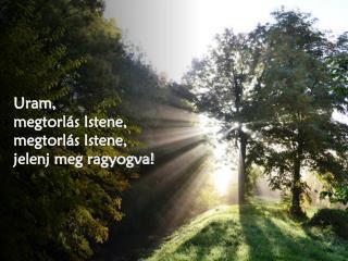 Uram,  megtorlás Istene,  megtorlás Istene,  jelenj meg ragyogva!