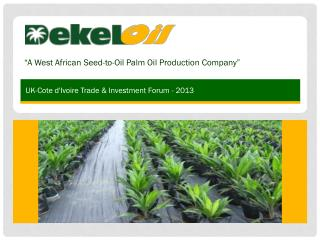 """ A  West African Seed-to-Oil  Palm Oil Production Company"""