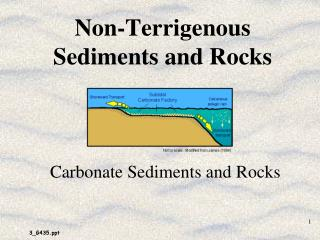 Non-Terrigenous Sediments and Rocks