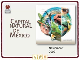 C APITAL NATURAL     DE  M ÉXICO