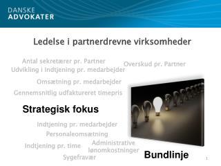 Ledelse i partnerdrevne virksomheder