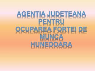 AGENTIA JUDETEANA  PENTRU  OCUPAREA FORTEI DE MUNCA  HUNEDOARA