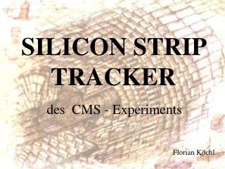 SILICON STRIP TRACKER