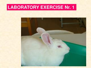 LABORATORY EXERCISE Nr. 1