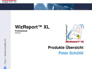 WizReport ™  XL Professional Version 6