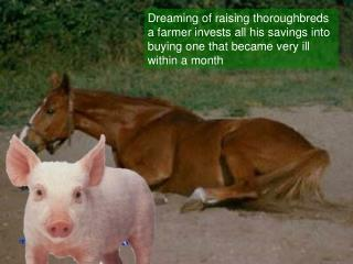 Day 2 – no change  piglet kept on pleading with the horse :