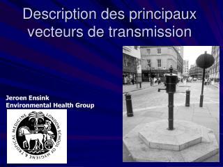 Description des principaux vecteurs de transmission
