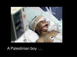 A Palestinian boy .…