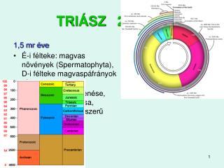 TRIÁSZ   251-200