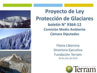 Flavia Liberona  Directora Ejecutiva Fundación Terram 30 de julio de 2014