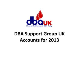 DBA Support Group UK Accounts for 2013