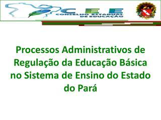 Processos Administrativos de Regulação da Educação Básica no Sistema de Ensino do Estado do Pará