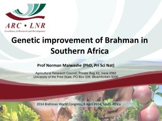 Genetic improvement of Brahman in Southern Africa