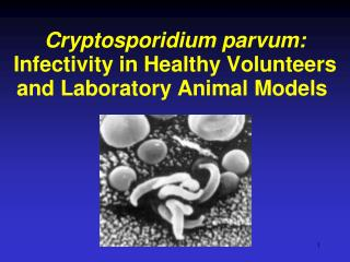 Cryptosporidium  Volunteer Study