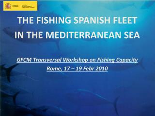 THE FISHING SPANISH FLEET  IN THE MEDITERRANEAN SEA GFCM Transversal Workshop on Fishing Capacity