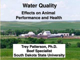 Trey Patterson, Ph.D. Extension Beef Specialist South Dakota State University
