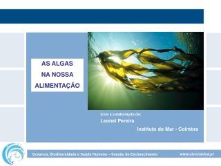 Com a colaboração de: Leonel Pereira
