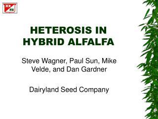 HETEROSIS IN HYBRID ALFALFA