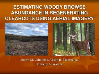 ESTIMATING WOODY BROWSE ABUNDANCE IN REGENERATING CLEARCUTS USING AERIAL IMAGERY