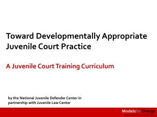 Toward Developmentally Appropriate  Juvenile Court Practice :