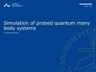 Simulation of probed quantum many body systems