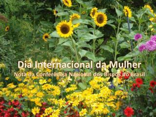 Dia Internacional da Mulher Nota da Conferência Nacional dos Bispos do Brasil