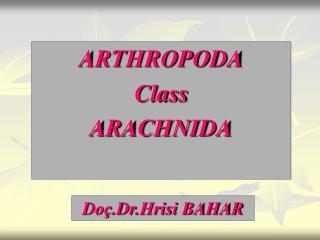 ARTHROPODA Class ARACHNIDA