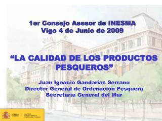 1er Consejo Asesor de INESMA Vigo 4 de Junio de 2009