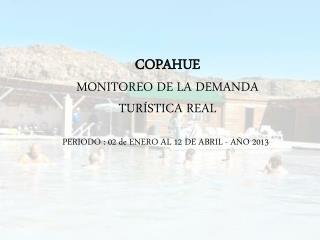 COPAHUE MONITOREO DE LA DEMANDA TURÍSTICA REAL PERIODO : 02 de ENERO AL 12 DE ABRIL - AÑO 2013