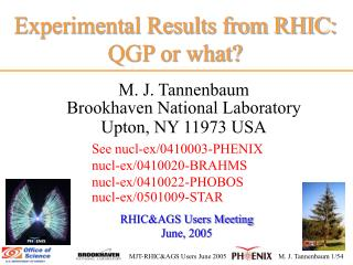 Experimental Results from RHIC: QGP or what?