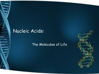 Nucleic Acids: