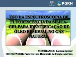 MESTRANDA: Larissa  Bussler ORIENTADOR: Prof. Dr. Luis Humberto da Cunha Andrade