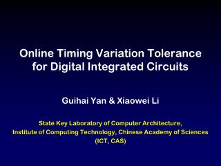Online Timing Variation Tolerance  for Digital Integrated Circuits
