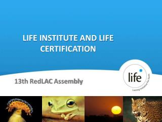 LIFE INSTITUTE AND LIFE CERTIFICATION