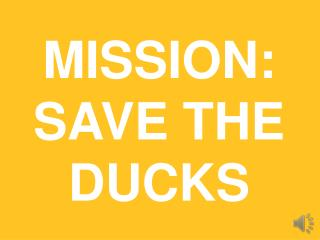 MISSION:  SAVE THE DUCKS