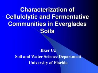 Characterization of Cellulolytic and Fermentative Communities in Everglades Soils