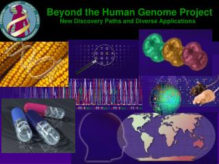 Beyond the Human Genome Project